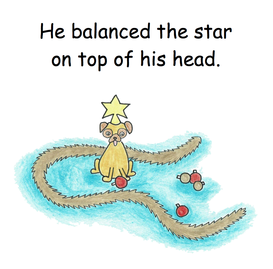 Christmas star on dogs head