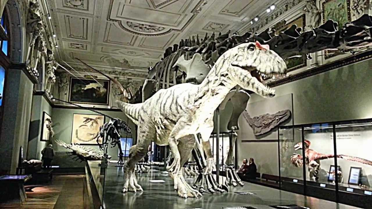 vienna natural history museum dinosaur