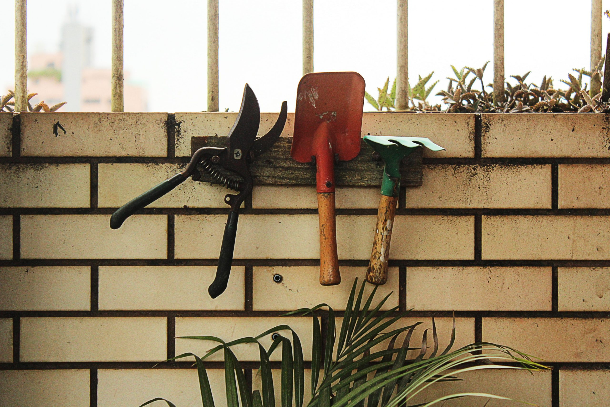 keep garden tools in good condition